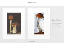 Bruce Williams - Mushrooms - Giclée prints