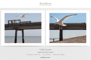 Colin Guest - Gulls over Deal Pier